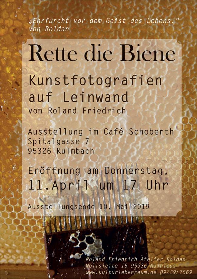 Roland Friedrich rette die Biene