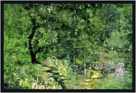 Roldan Wassergrün Kunstfotographie